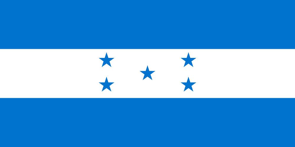 Имя нового руководителя Гондураса будет объявлено спустя месяц после выборов