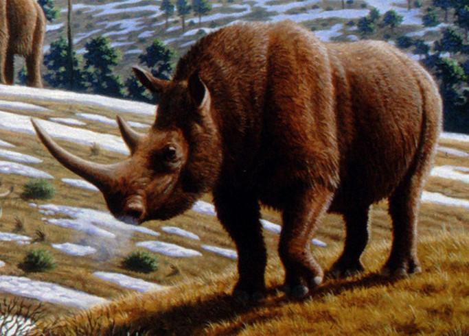 Ученые назвали вид животных, который вымирает уже млн лет