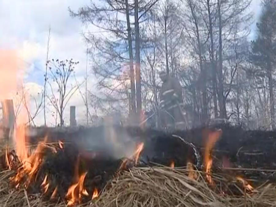 Как минимум 700 жилых домов сгорели вохваченной лесным пожаром Калифорнии
