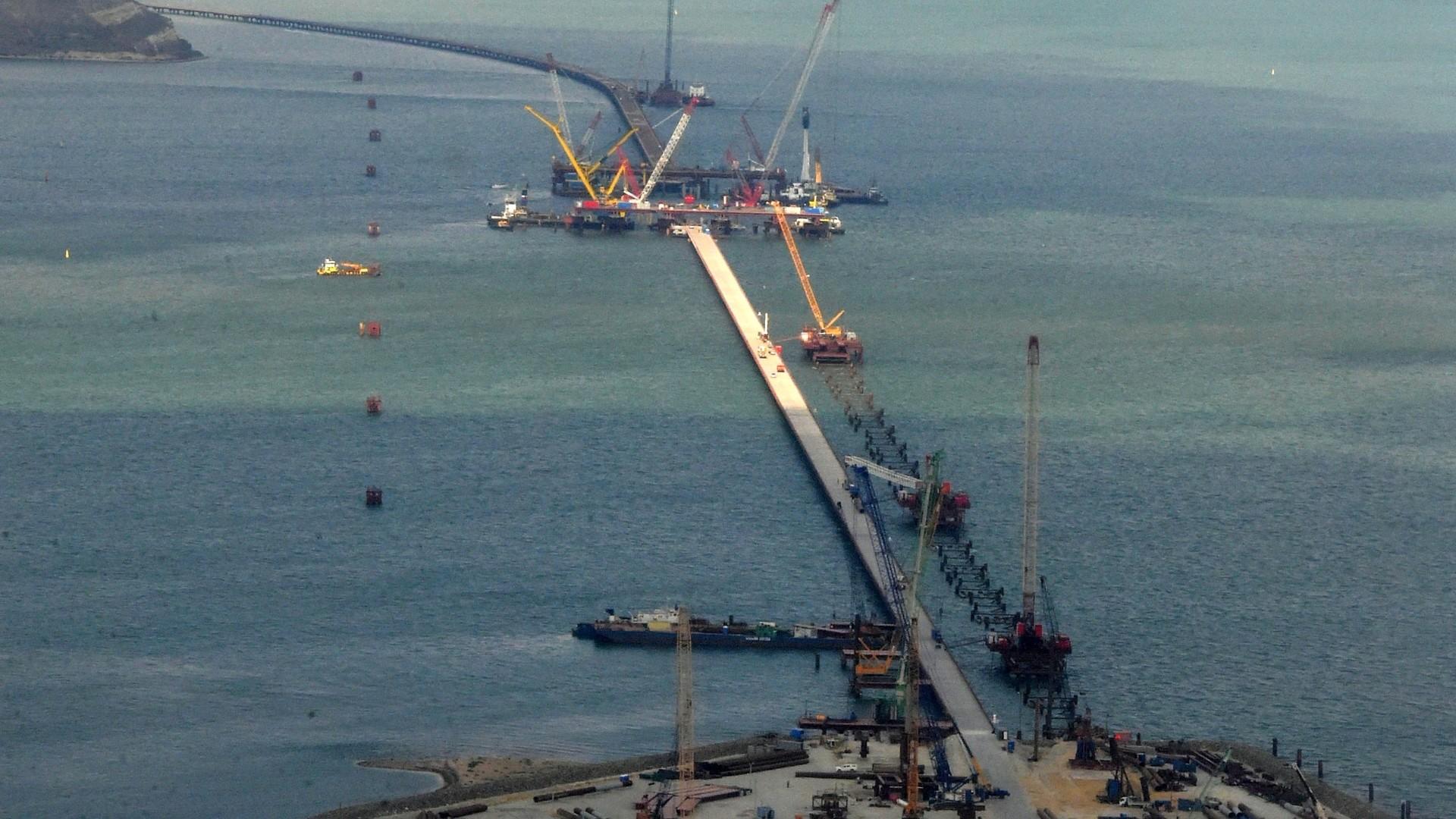 Первым проинспектирует Крымский мост кот покличке Мостик