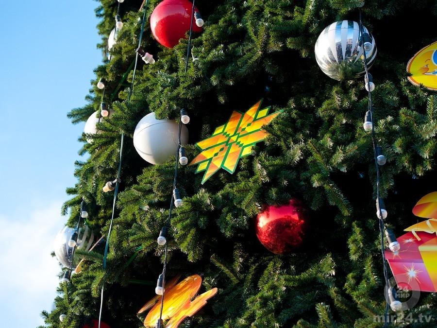 Стало известно, когда уберут главную новогоднюю ель страны