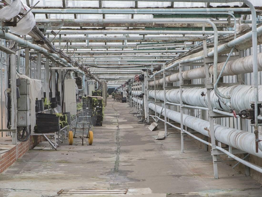 «Нафтогаз» ответил наразрешение Германии относительно Nord Stream-2— Борьба продолжается