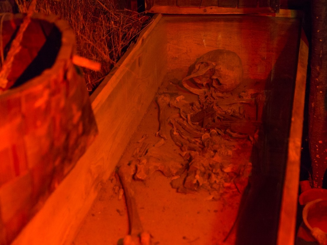 Ученые доказали нашествие «Великой языческой армии» наАнглию при помощи  рыбы