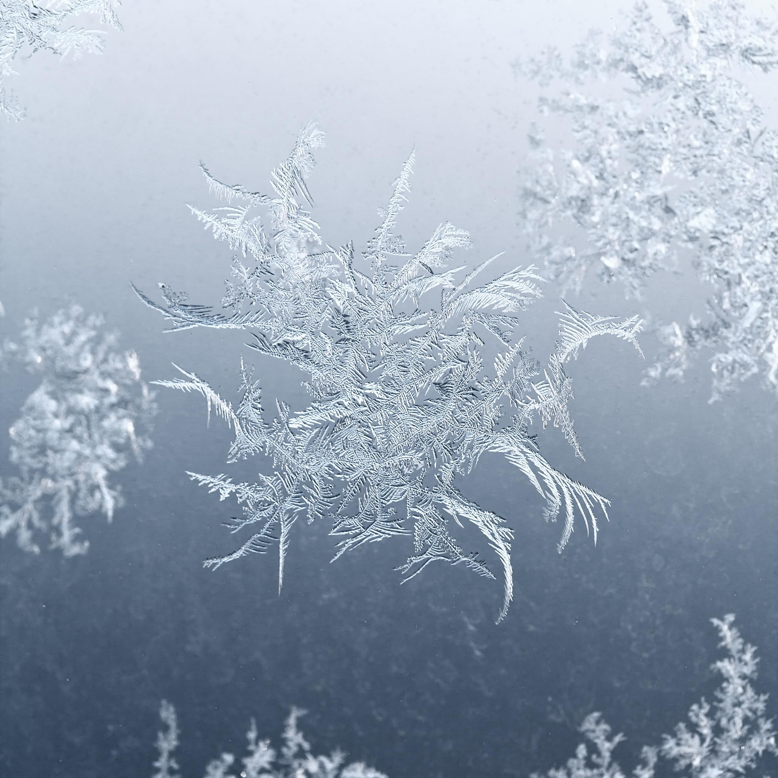 Шведские ученые обнаружили новый вид снежинки, сообщили СМИ