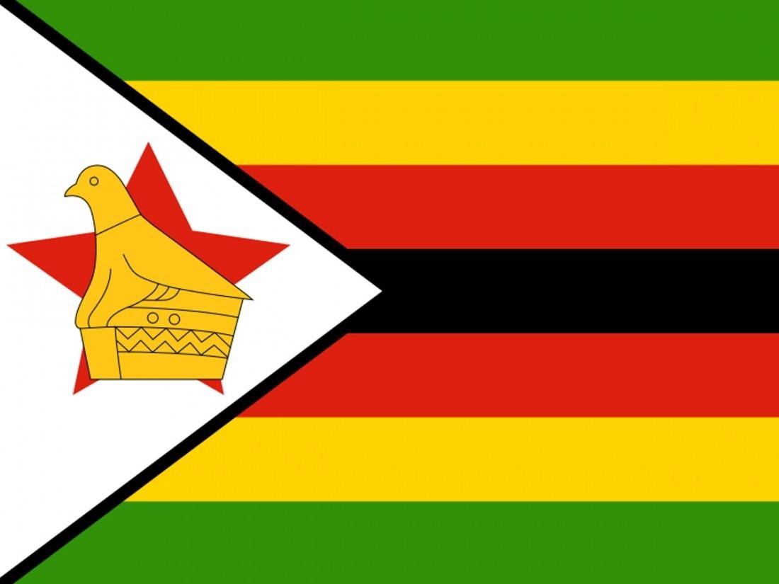 Президентские ипарламентские выборы начались вЗимбабве