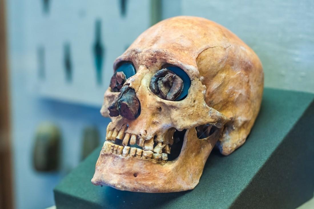 Ученые узнали, зачем неандертальцам были нужны большие носы