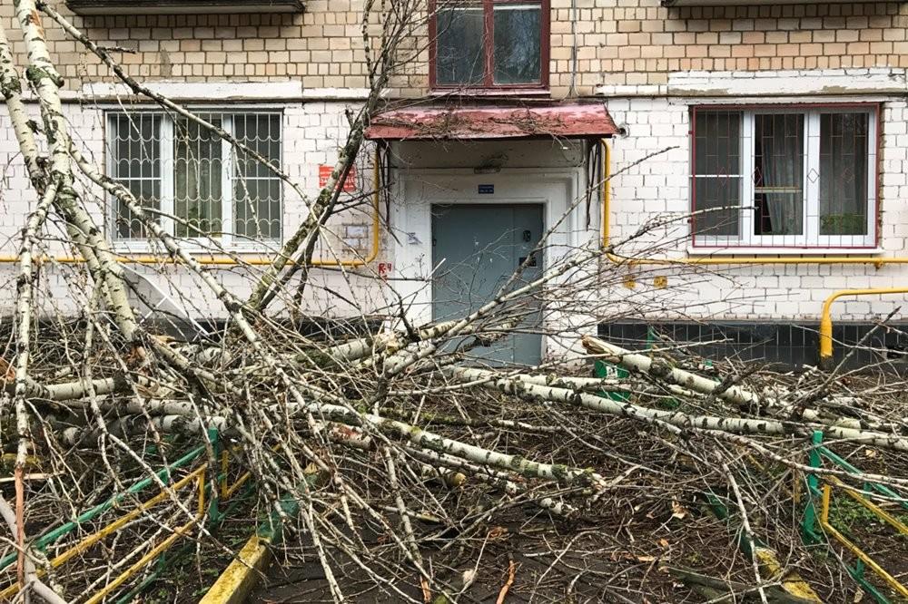 МЧС: вРеспублике Башкортостан 22апреля предполагается  сильный ветер