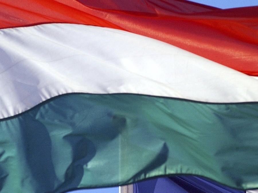 МИД объявил овысылке венгерского дипломата