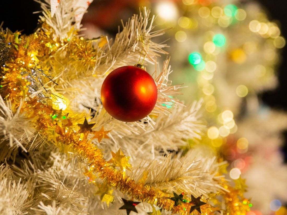 Новый 2012 год поздравление фото 247