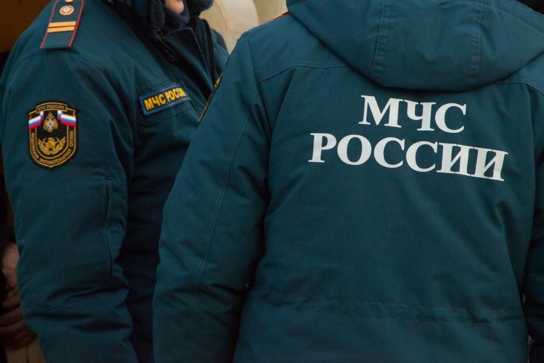 Работники МЧС спасли наМоскве-реке троих провалившихся под лед