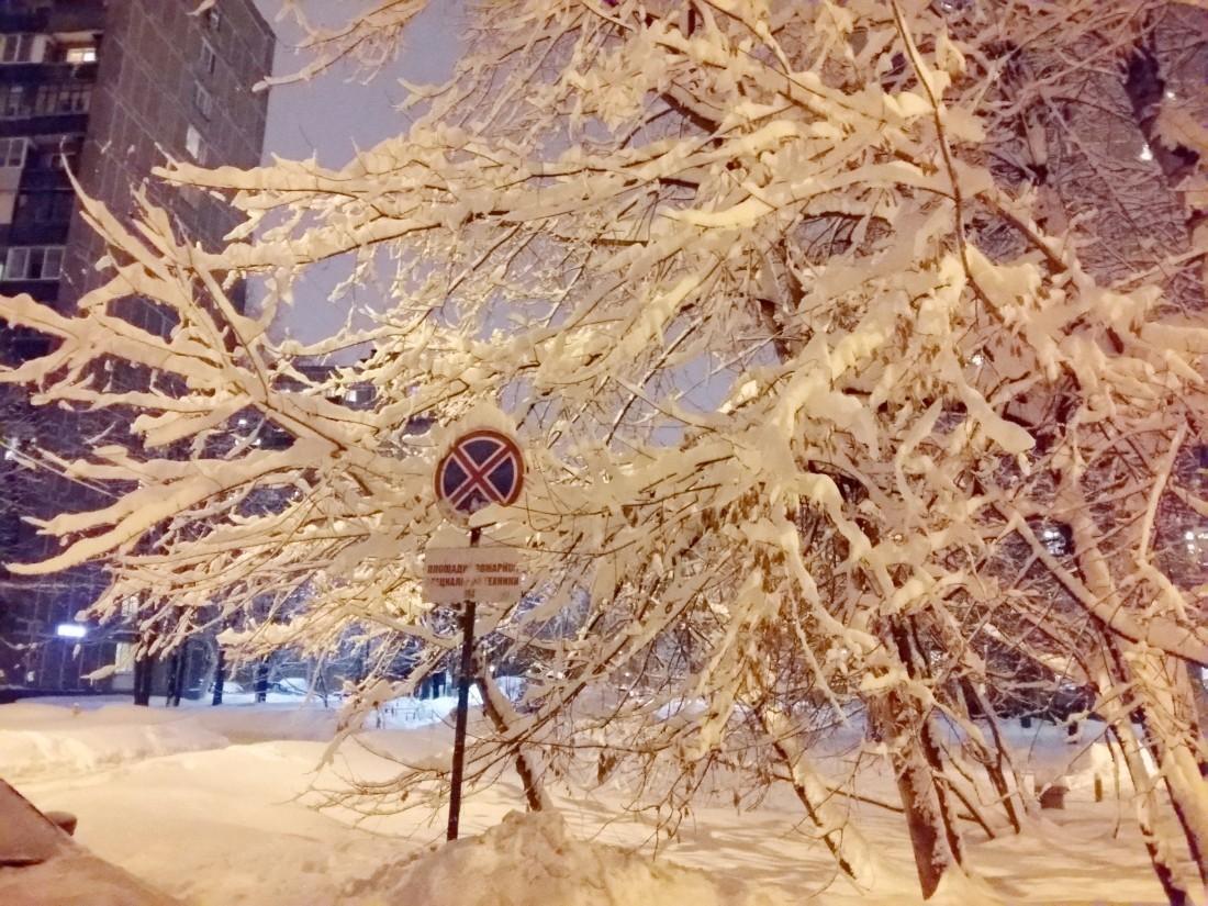 Вночь начетверг похолодает до-17°С— Синоптики предупреждают