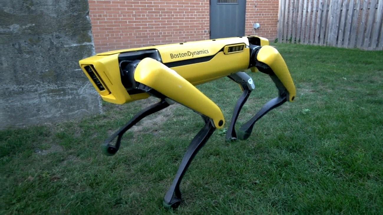 Робот-пес отBoston Dynamics открывает дверь ипропускает вперед