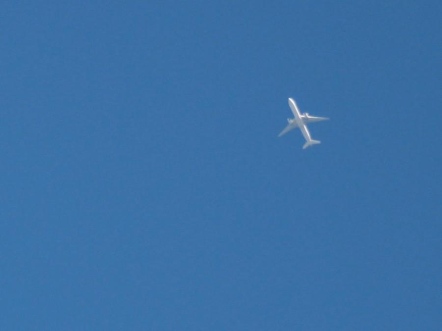 Портивший воздух авиапассажир заставил пилота совершить экстренную посадку