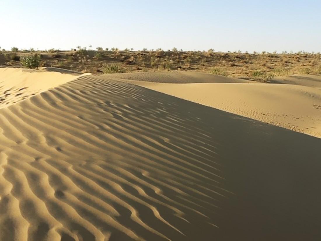 Микробы способные выжить наМарсе найдены впустыне Атакама