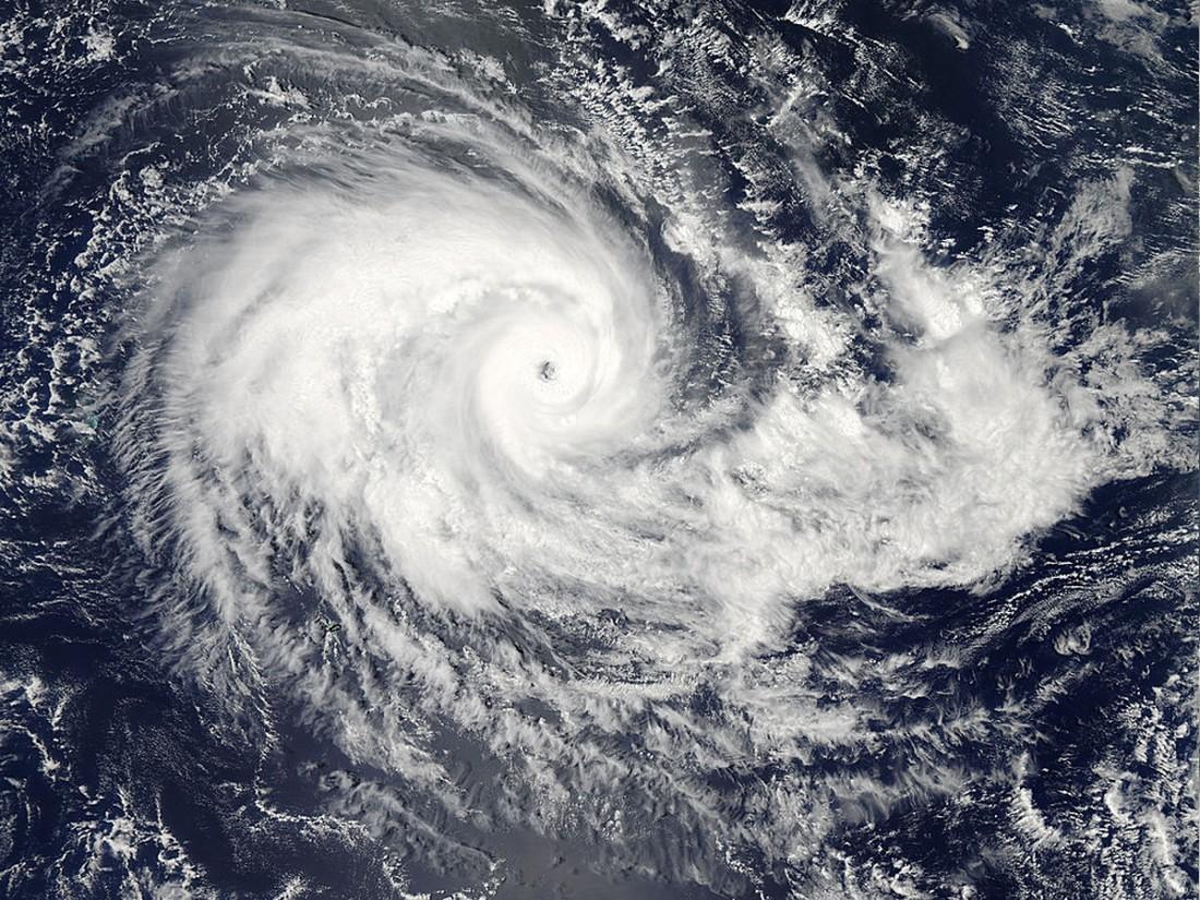Пассажир попавшего вшторм круизного лайнера обнародовал видео мощного циклона