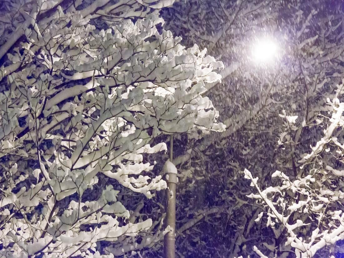 Сильные снегопады ипотепление ожидается в столице России кконцу рабочей недели