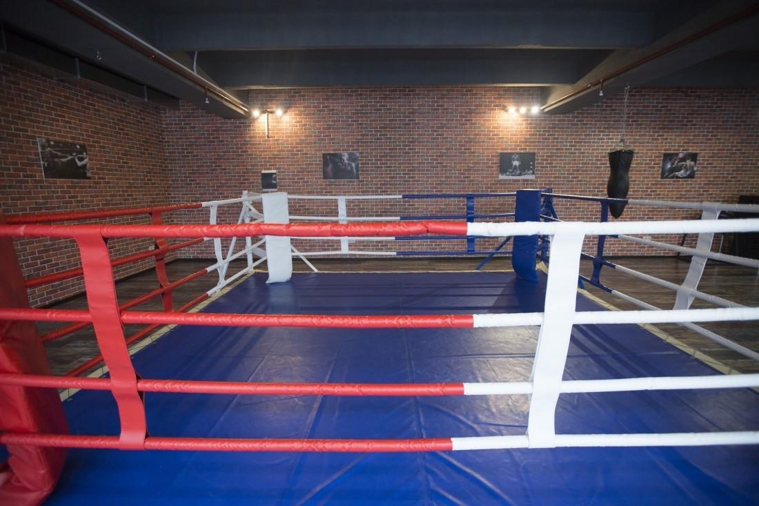 ВШвеции могут запретить дело профессиональным боксом