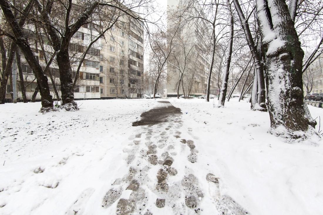 Наюге Российской Федерации начинается десятилетний цикл похолодания— Ученый