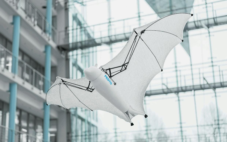 Инженеры разработали роботов ввиде летучей лисицы ипаука