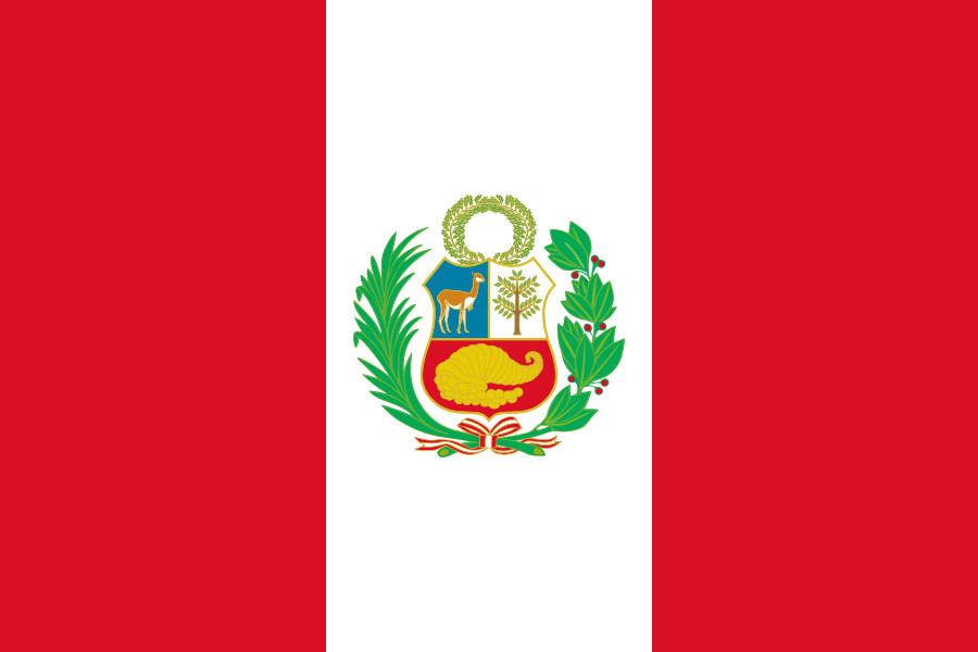 Парламент Перу принял отставку президента страны Кучински
