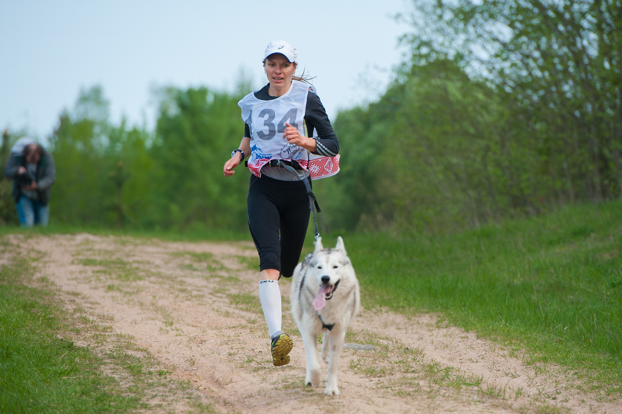 Собачья упряжка на траве: в Беларуси прошел «Весенний Драйленд» (ФОТО)