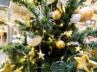 В музее «Гатчина» рассказывают, как праздновали Новый год и Рождество императоры