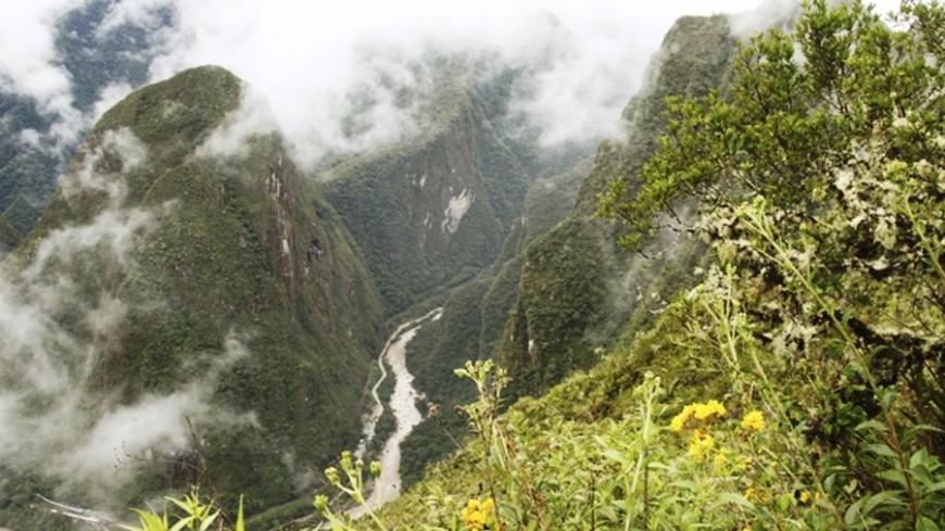 Автобус упал в пропасть в Перу: семь жертв, 30 раненых