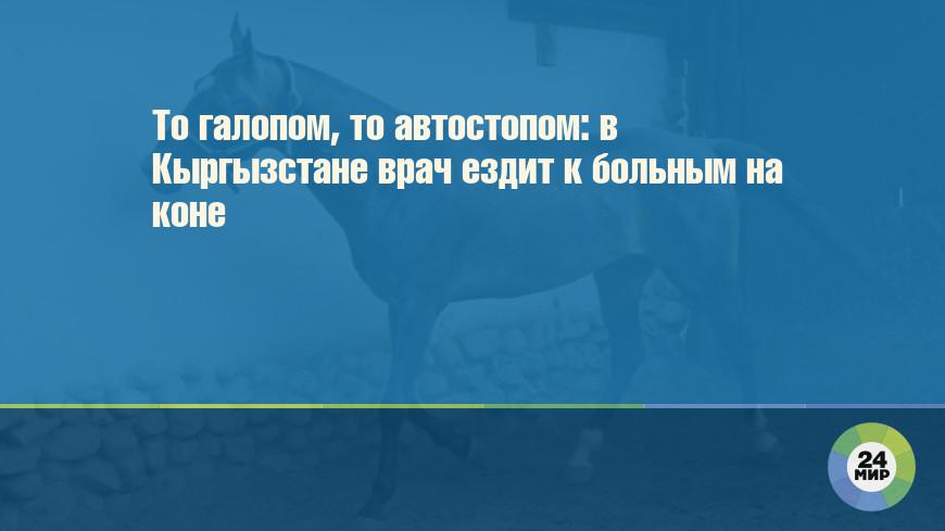 То галопом, то автостопом: в Кыргызстане врач ездит к больным на коне