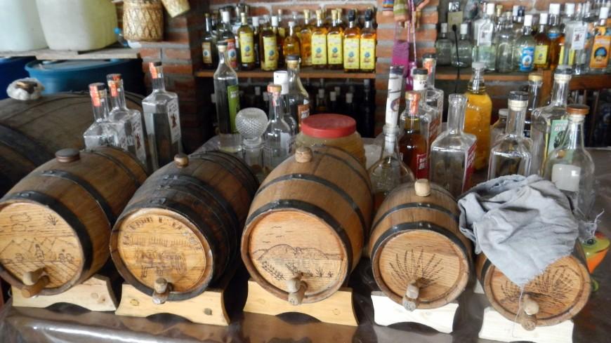 Не просто алкоголь: как в Мексике придумали дешевую замену текиле
