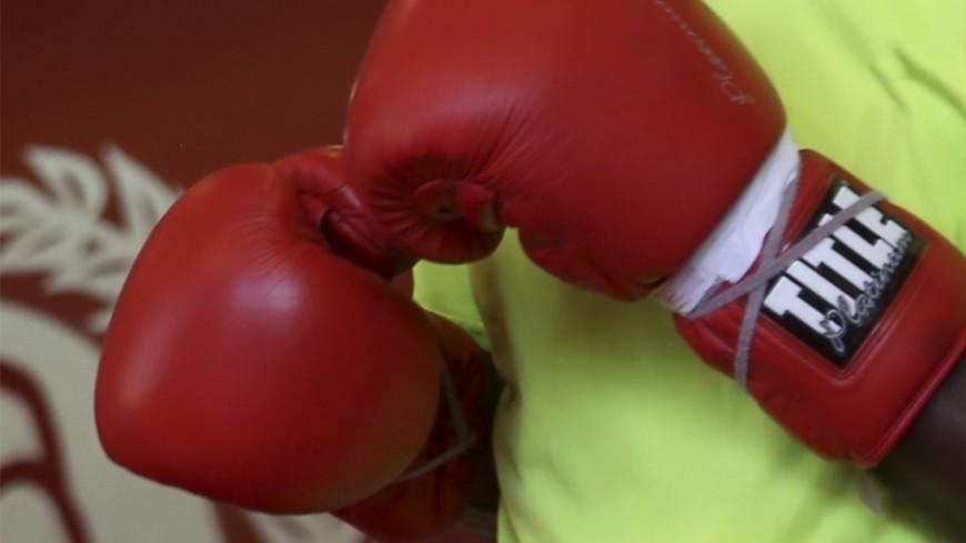 Бой-реванш между Головкиным и Альваресом состоится 15 сентября