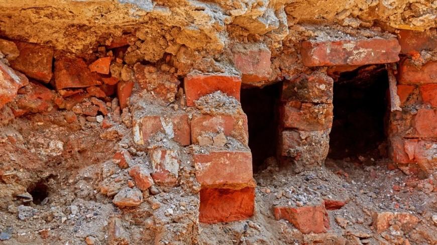 В Беларуси нашли крупное захоронение жертв расстрелов времен ВОВ