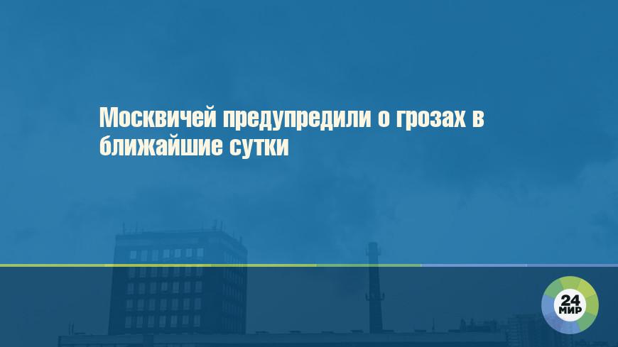 Москвичей предупредили о грозах в ближайшие сутки