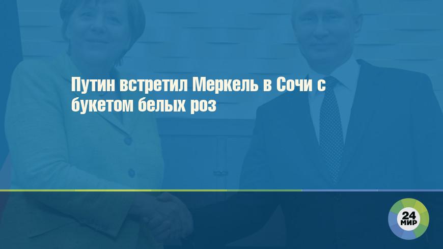 Путин встретил Меркель в Сочи с букетом белых роз