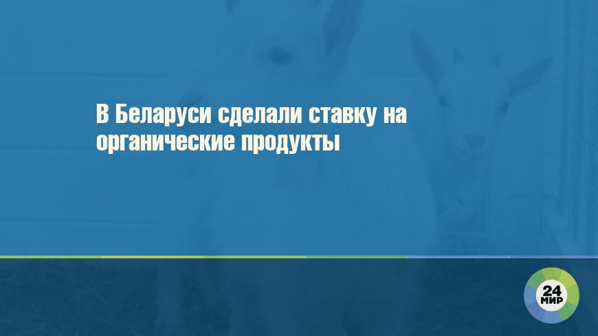 В Беларуси сделали ставку на органические продукты