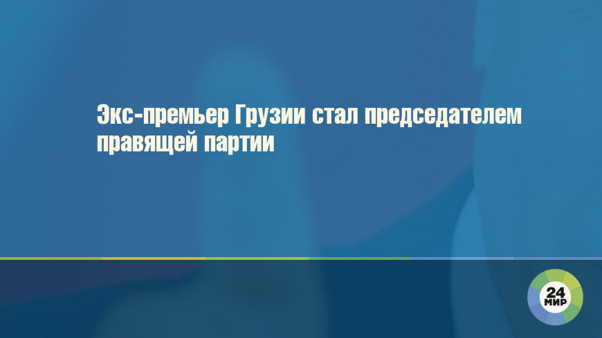 Экс-премьер Грузии стал председателем правящей партии