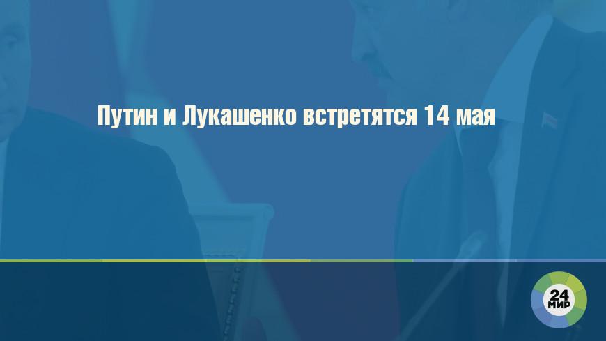 Путин и Лукашенко встретятся 14 мая