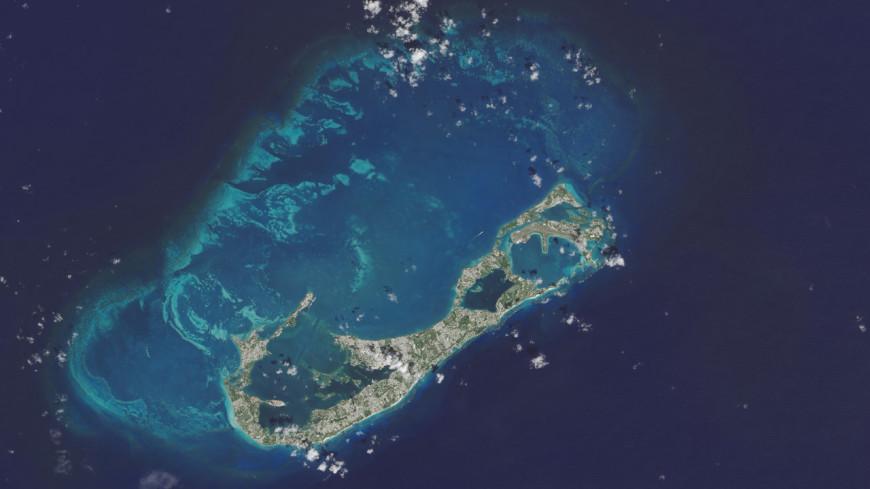 В Бермудском море нашли неизвестную науке экосистему