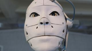 Китайский производитель выпустил бюджетную модель робота-пса