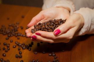 Финские ученые научились выращивать кофе в лаборатории